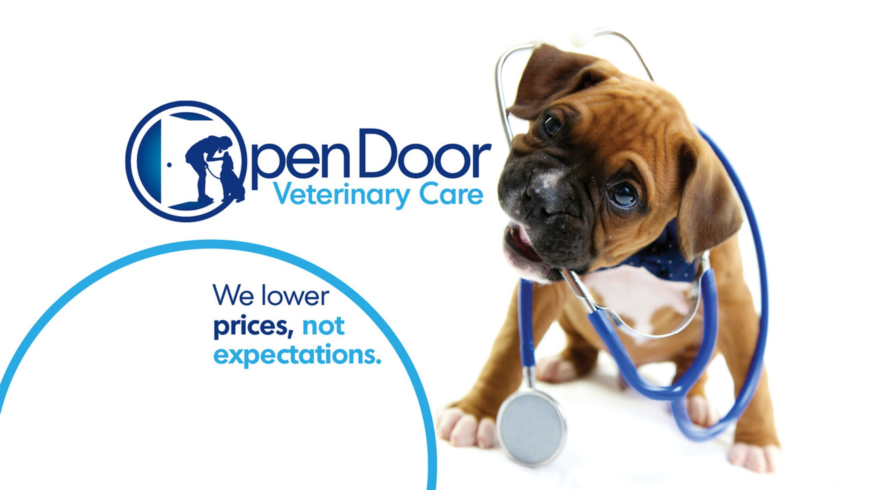 Open Door Veterinary Clinic West Asheville Low Cost Vet