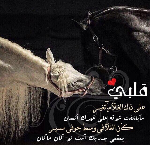 Pin By ʝɛɛɬɛƙ Al3nzii On عشق الخيل Love Words Strong Quotes Arabic Poetry