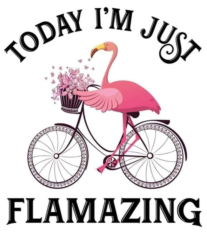 03ccdb7ad2cd4 Today I'm flamazing! | Bacon | Flamingo, Pink flamingos, Flamingo art