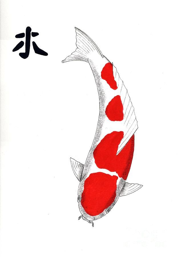 Japanese koi kohaku feng shui wood by gordon lavender for Japanese koi carp paintings