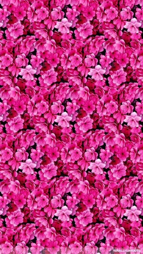 Flowers Tumblr Iphone Beautiful Lookscreen Floral Wallpaper