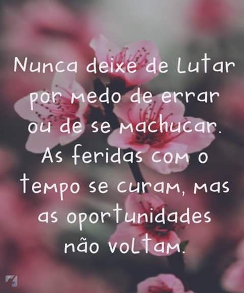 Frases Para Reflexão 10674854 Atitudes Frases Quotes E Words