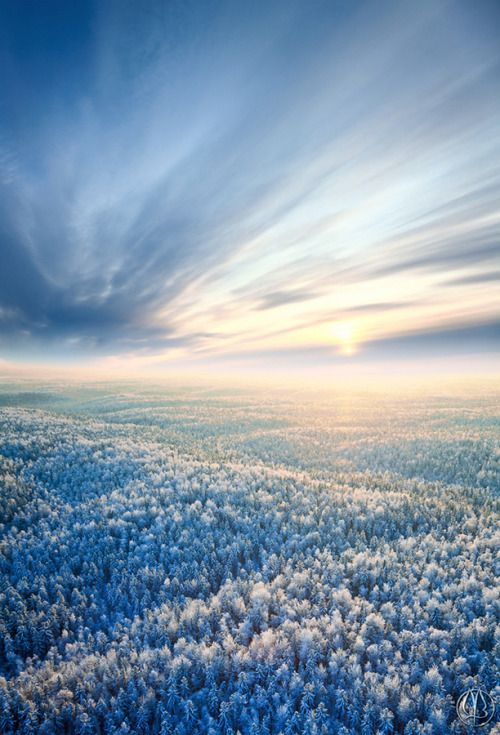 de-preciated:   (via 500px / Frosty sunset by Vladimir Melnikov) Aerial view of winter forest during sunset.