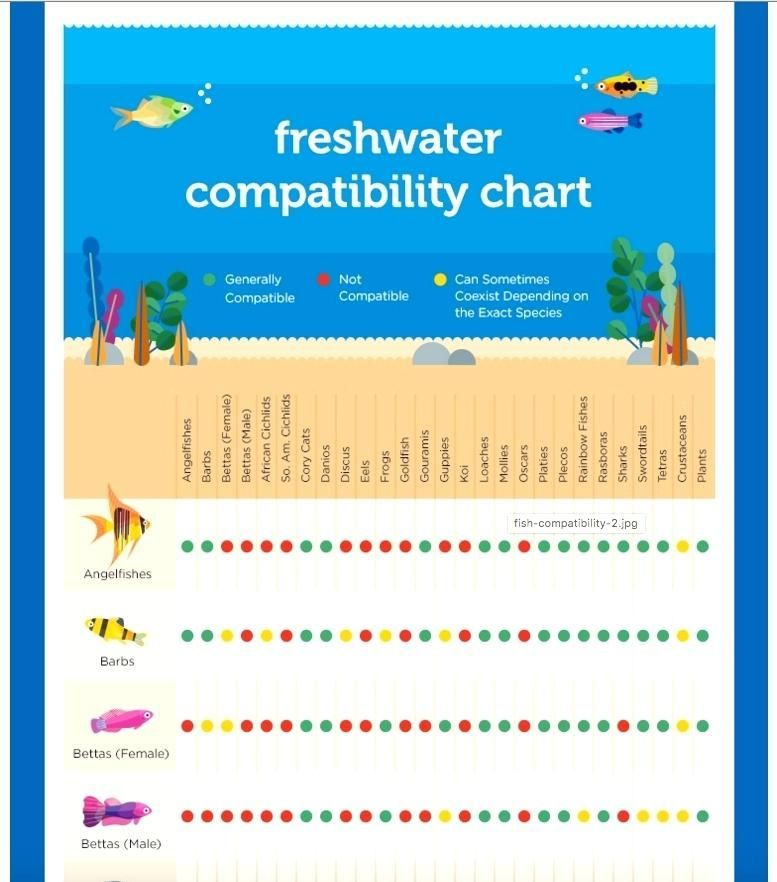 Freshwater Fish Compatibility Guide Tropical Chart Compatibilitychart Freshwater Fish C Zodiac Compatibility Chart Fish Chart Zodiac Signs Compatibility Chart