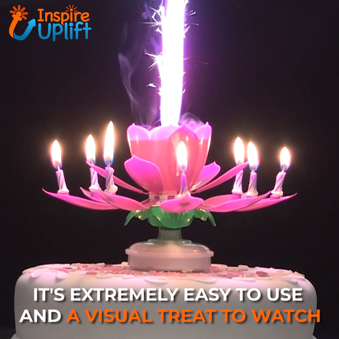 Blooming Musical Candle Video Video Birthday Candles Birthday Songs Happy Birthday Images