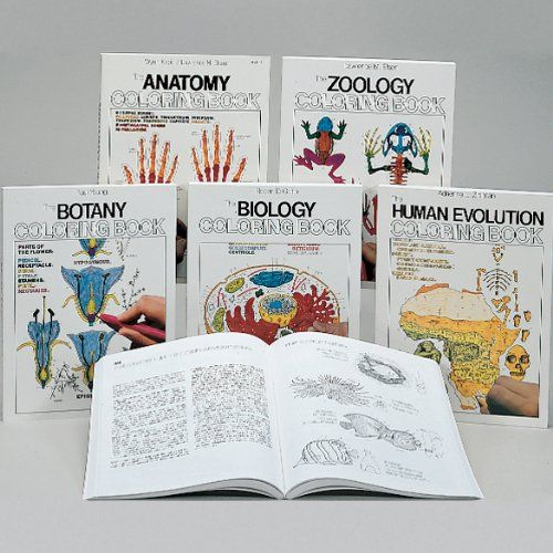 Biology Educational Coloring Book School Curriculum Sets Amazon Com Industrial Scientific Anatomy Coloring Book Coloring Books Biology