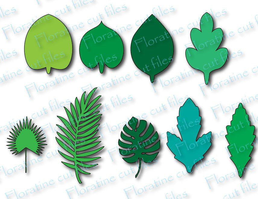 Paper Flower Template For Leaves svg, Leaf Template, Paper Leaf Template SVG, DIY Flowers, Cut file Quill Kit Quilling Cricut Cutting File