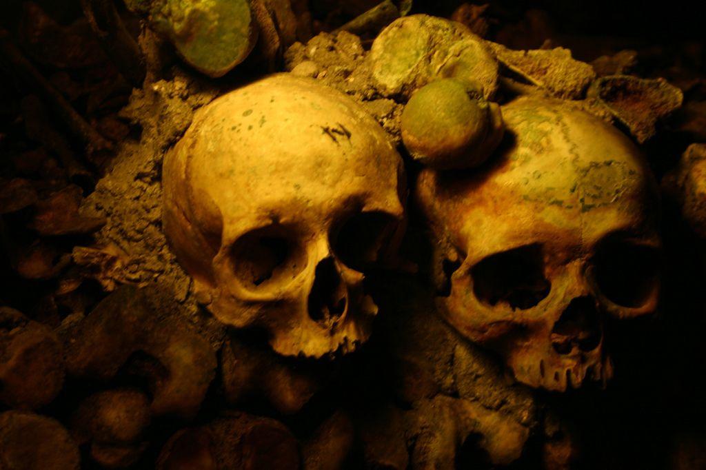 skulls | Flickr – Compartilhamento de fotos!