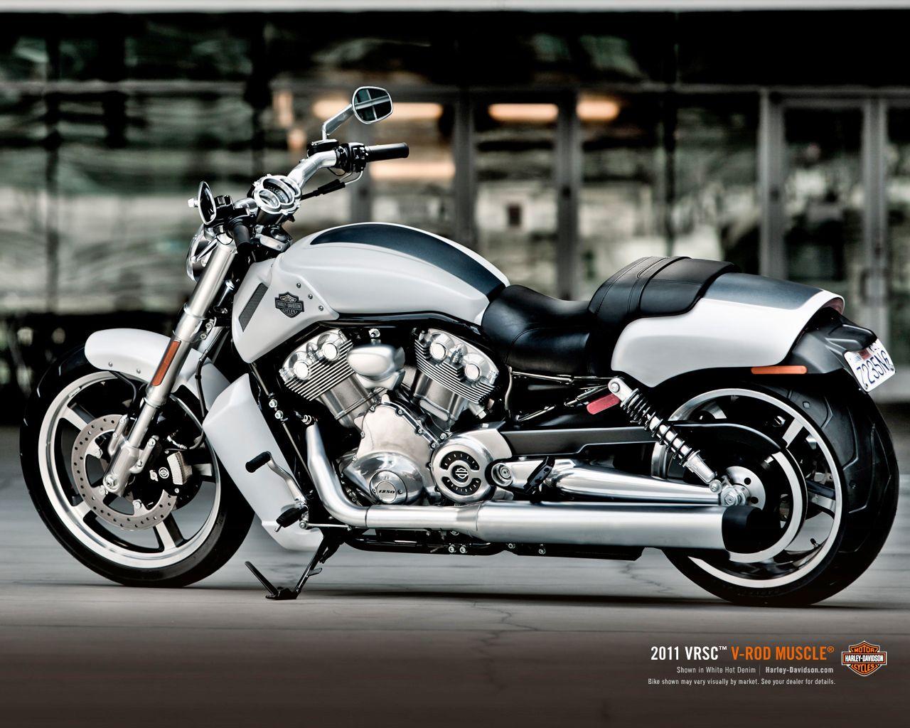 Harley Davidson Vrod Muscle White Denim Vrod Custom Moto Harley Davidson Road King