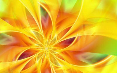 Yellow Flower Petals Hd Wallpaper Abstract Wallpaper Backgrounds Yellow Wallpaper Abstract Wallpaper