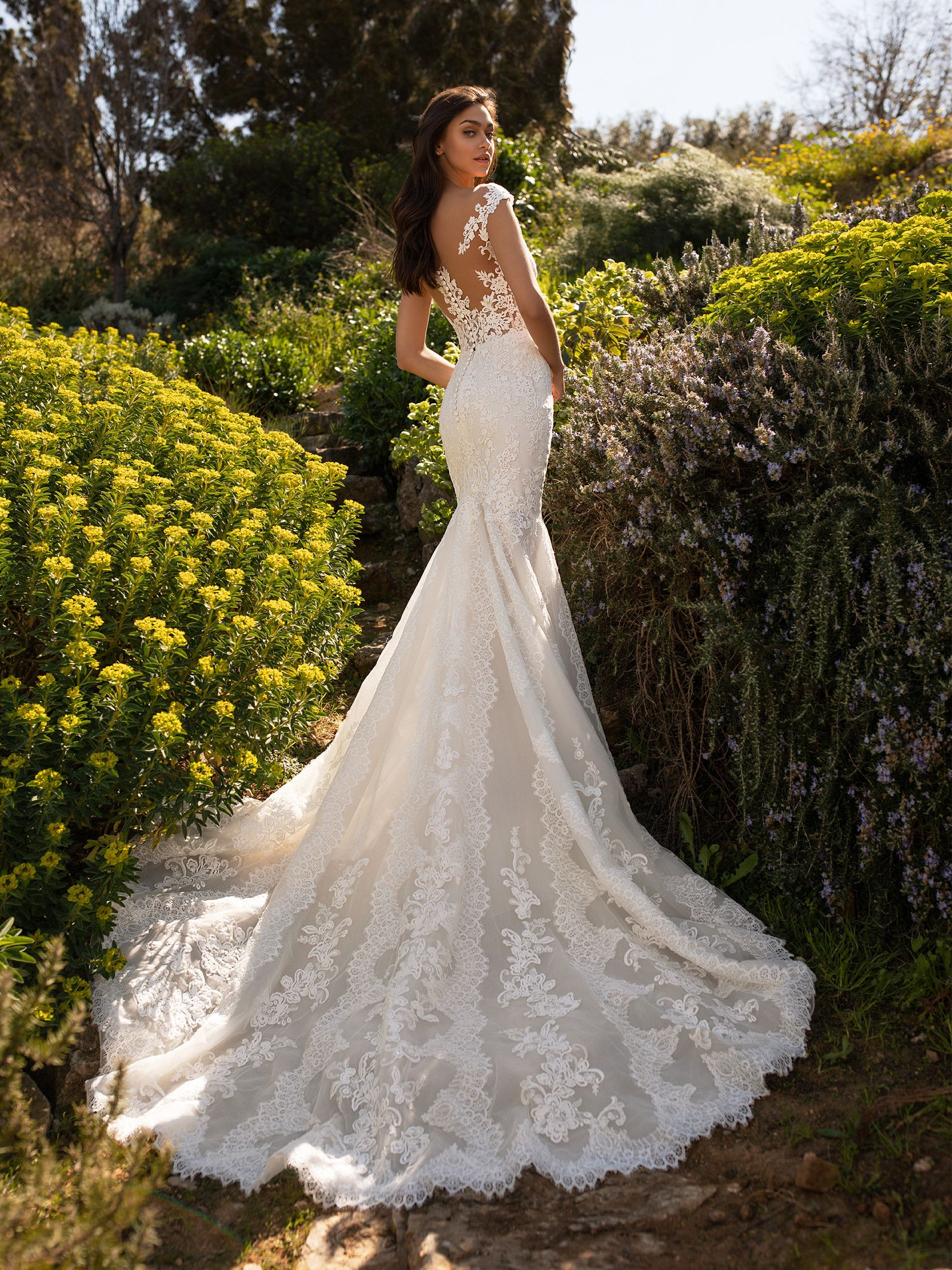 Mermaid Wedding Gown With Lace Placements Pronovias Lace Back Wedding Dress Wedding Dress Guide Wedding Dress Styles [ 2255 x 1691 Pixel ]