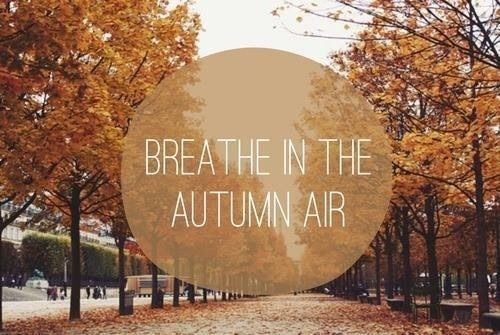Fall Season Quotes Tumblr Fall Style Clothesdiysdecor And