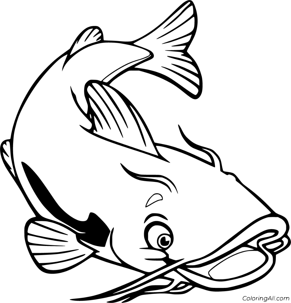 28 Free Printable Catfish Coloring Pages In Vector Format Easy To Print From Any Device And Automatically Fit Any Paper Catfish Images Coloring Pages Catfish