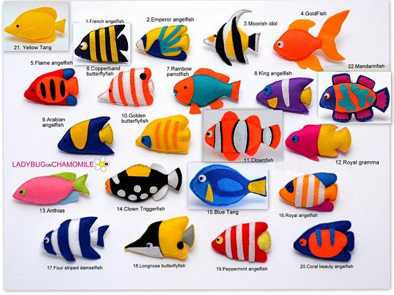 Fishes Felt Ornaments Toys Magnets Coral Fishes Fishes Toys