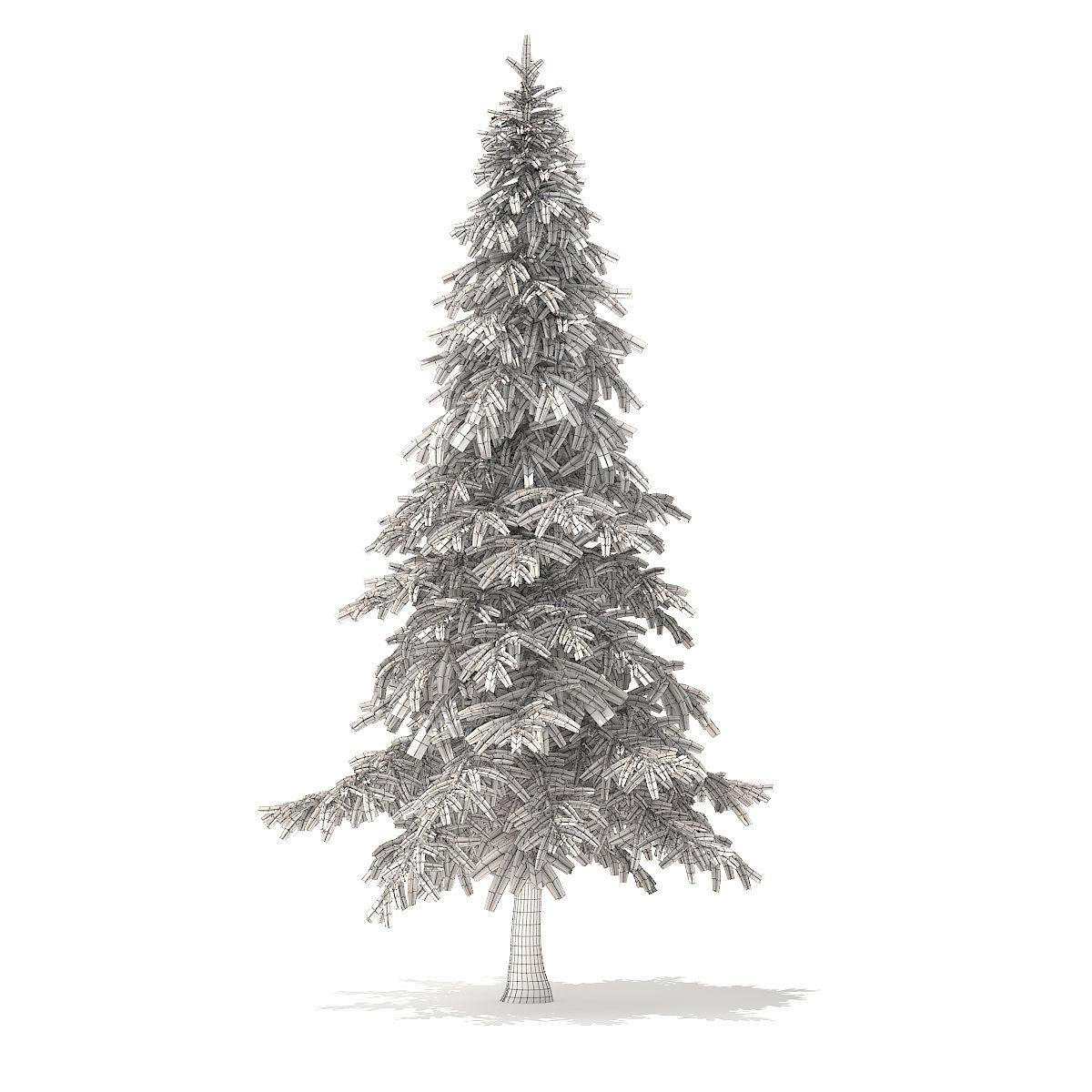 Fir Tree 3d Model 5 9m Tree Fir Model Spruce Tree Tree Fir Tree