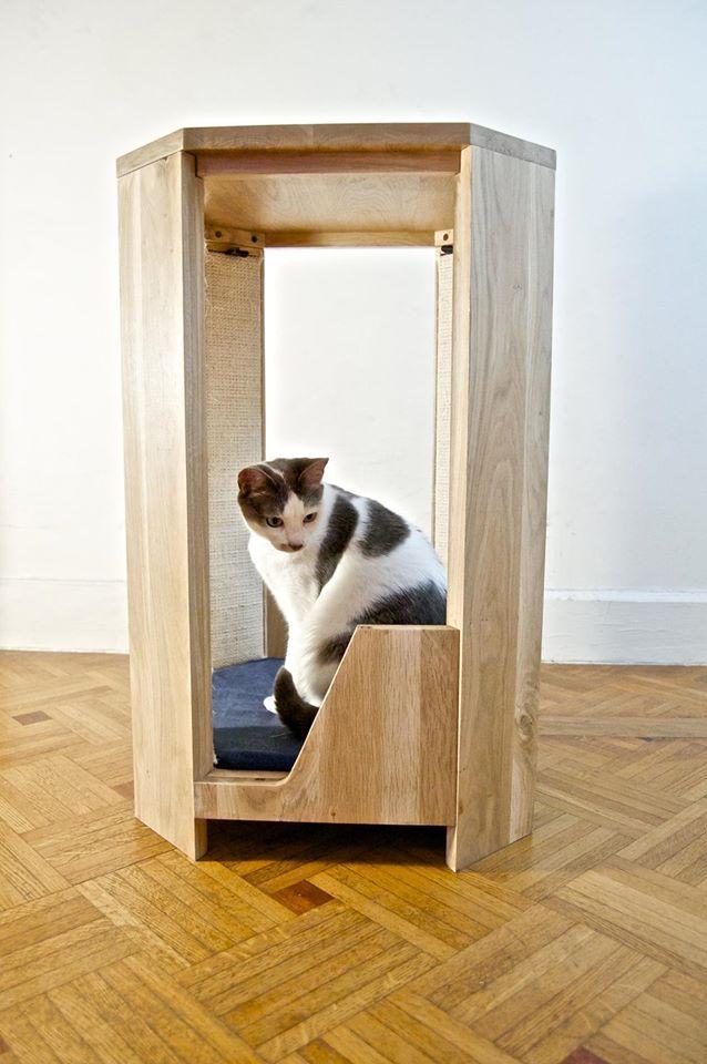 Side Table Cat Shelf Scratch Post Paw Friendly Domain Care Art Pet Furniture Shelves