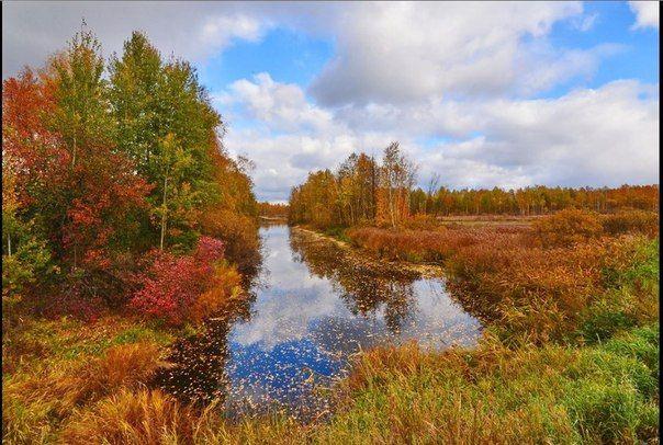 Киржач осенью