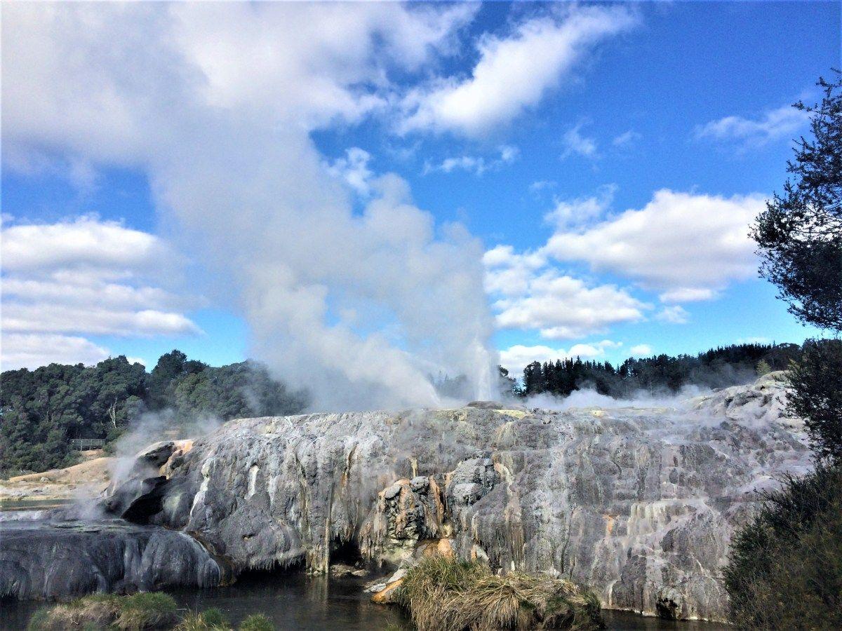 Rotorua, North Island 'It stings the nostrils