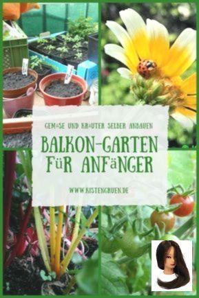 Balkongarten anlegen für Anfänger: Tricks zum Anbau von Gemüse und Kräuter auf dem Balkon #anbauvongemüse #Anbau #Anfänger #anlegen #Auf #Balkon #BalkonGarten #dem #für #Gemüse #Kräuter #Tricks #Und #Von #zum Balkongarten anlegen für Anfänger: Tricks zum Anbau von Gemüse und Kräuter auf dem Balkon        Gemüse und Kräuter anbauen ohne Garten: Tipps für den Anbau auf dem Balkon #anbauvongemüse Balkongarten anlegen für Anfänger: Tricks zum Anbau von Gemüse und Kräuter auf dem #anbauvongemüse