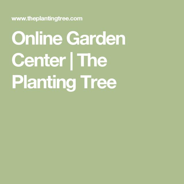 Online Garden Center The Planting Tree Garden Design Trees To