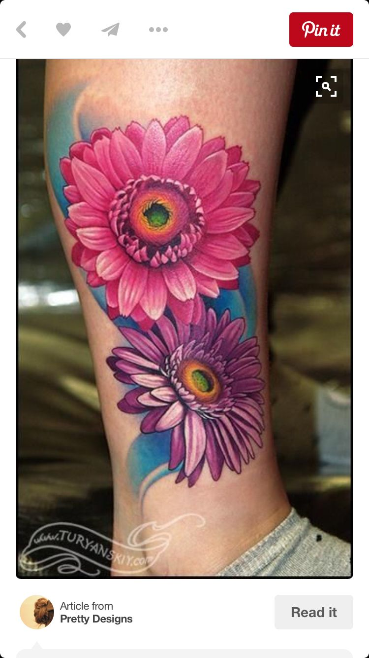 Gerber Daisy Daisy Tattoo Designs Daisy Flower Tattoos Daisy Tattoo