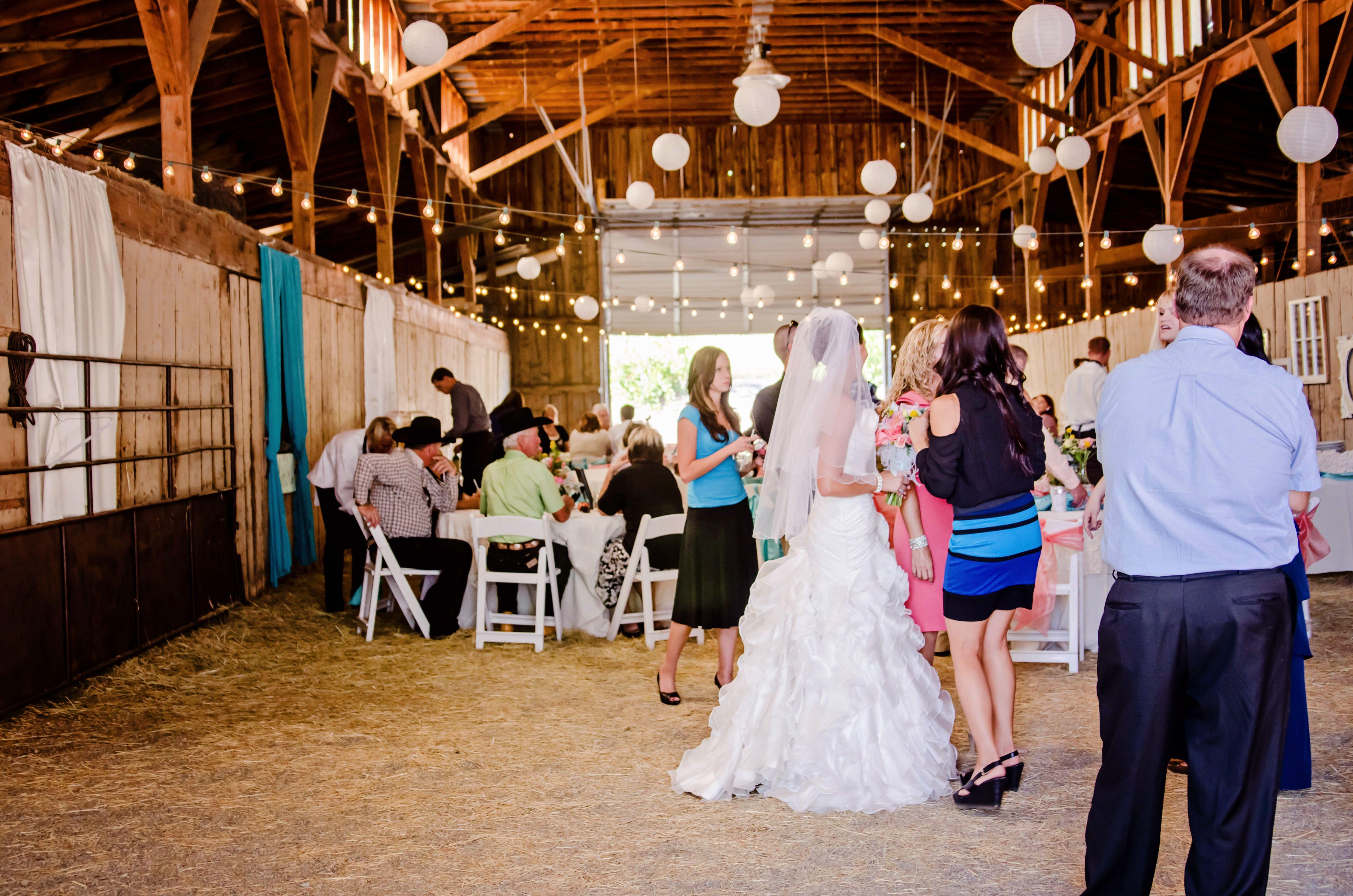 Weddings And Receptions Perfect Wedding Venue Reception Wedding Venues