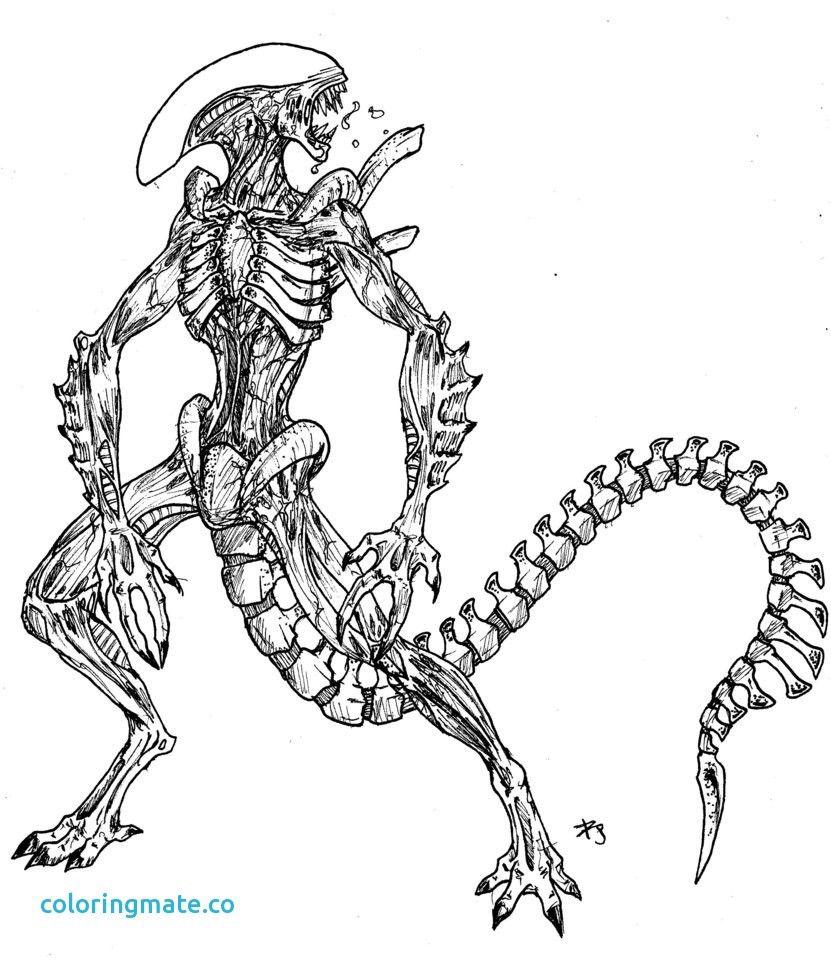 Alien Vs Predator Coloring Pages 9 For Alien Vs Predator Coloring Pages Toy Story Coloring Pages Xenomorph Drawings