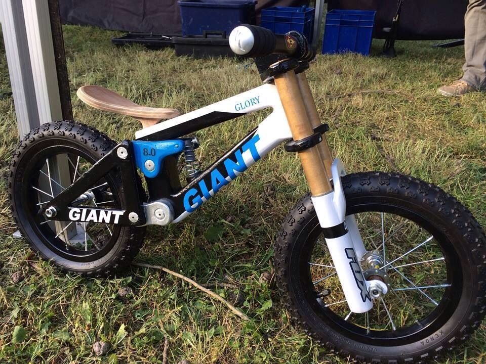 Best Balance Bike Ever Giant Glory Mountain Bikes Pinterest