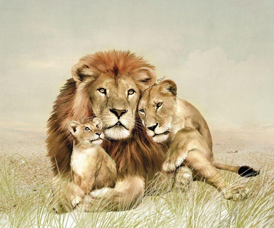 Familia De Leones Animales Disecados Animales Salvajes