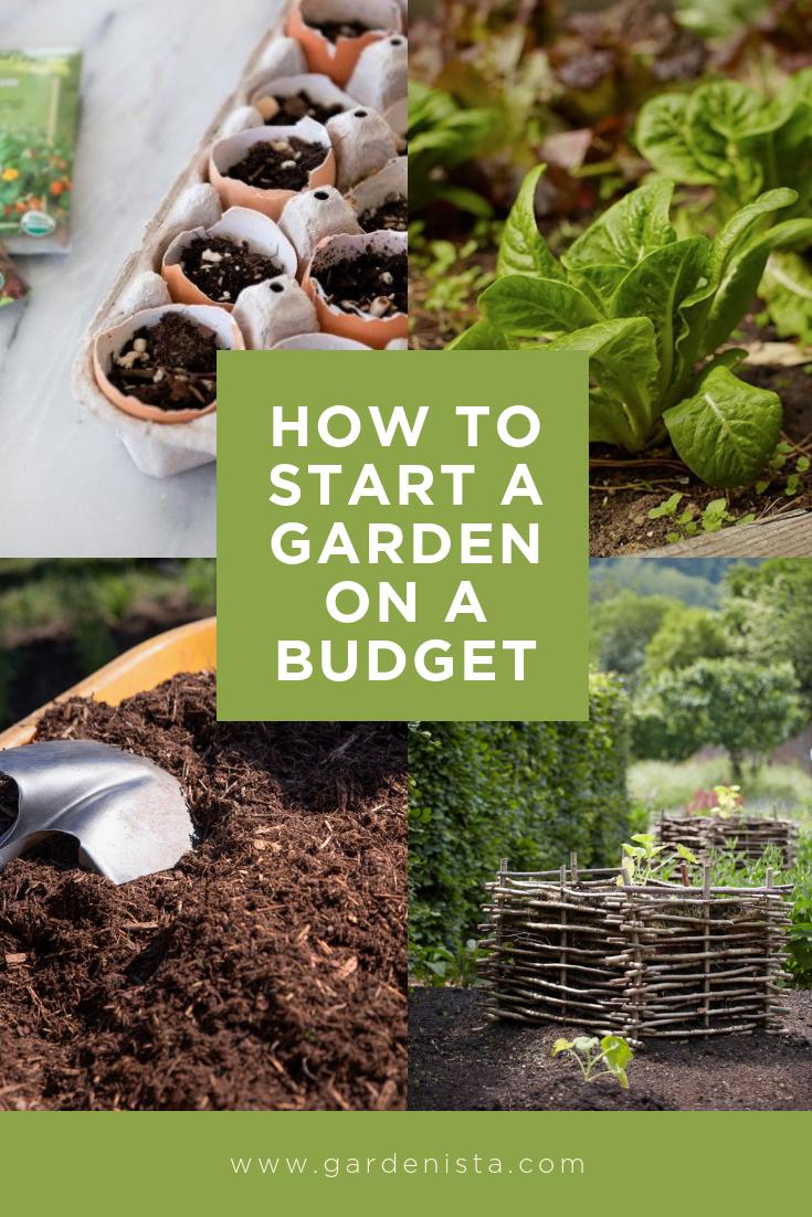 Your First Garden How To Start A Garden For Practically Free Gardenista Starting A Garden Gardening For Beginners Organic Gardening Tips