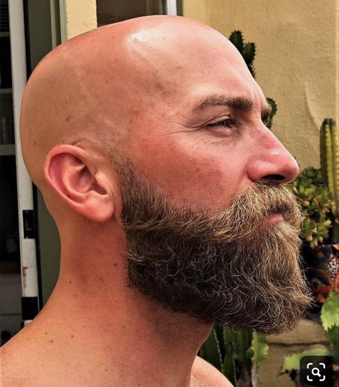 Beards In The World On Instagram From Pinterest The Best Way Bald Beard Beautifulbeard Beard B Bald With Beard Bald Men With Beards Bald Head With Beard