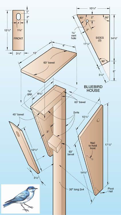 WOOD Magazine Online Bluebird house | Build It | Pinterest ...