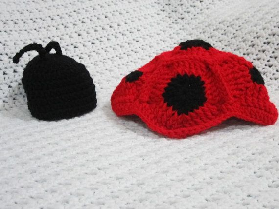Cute lady bug photo prop!