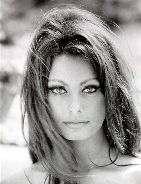 Sophia Loren | Sophia loren, Sophia loren photo, Beauty