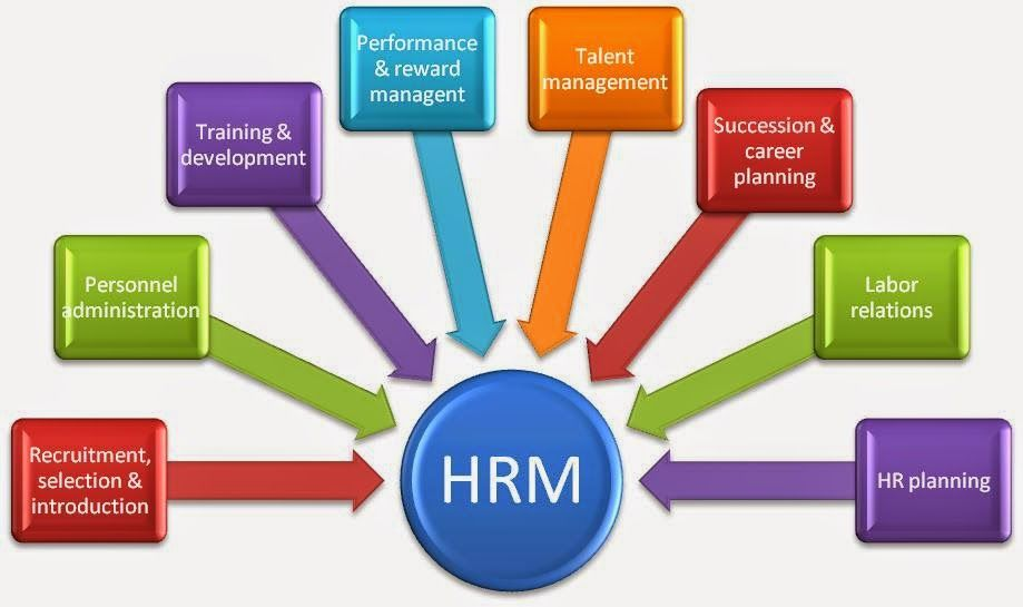 Some Human Resource Management Software Development Are Robust Enough To Function A Human Resource Management Human Resources Human Resource Management System