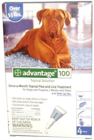 Advantage 2 Dog Blue Additional Details At The Pin Image Click It Flea And Tick Control Flea Control For Dogs Advantage Flea Flea Medicine For Dogs