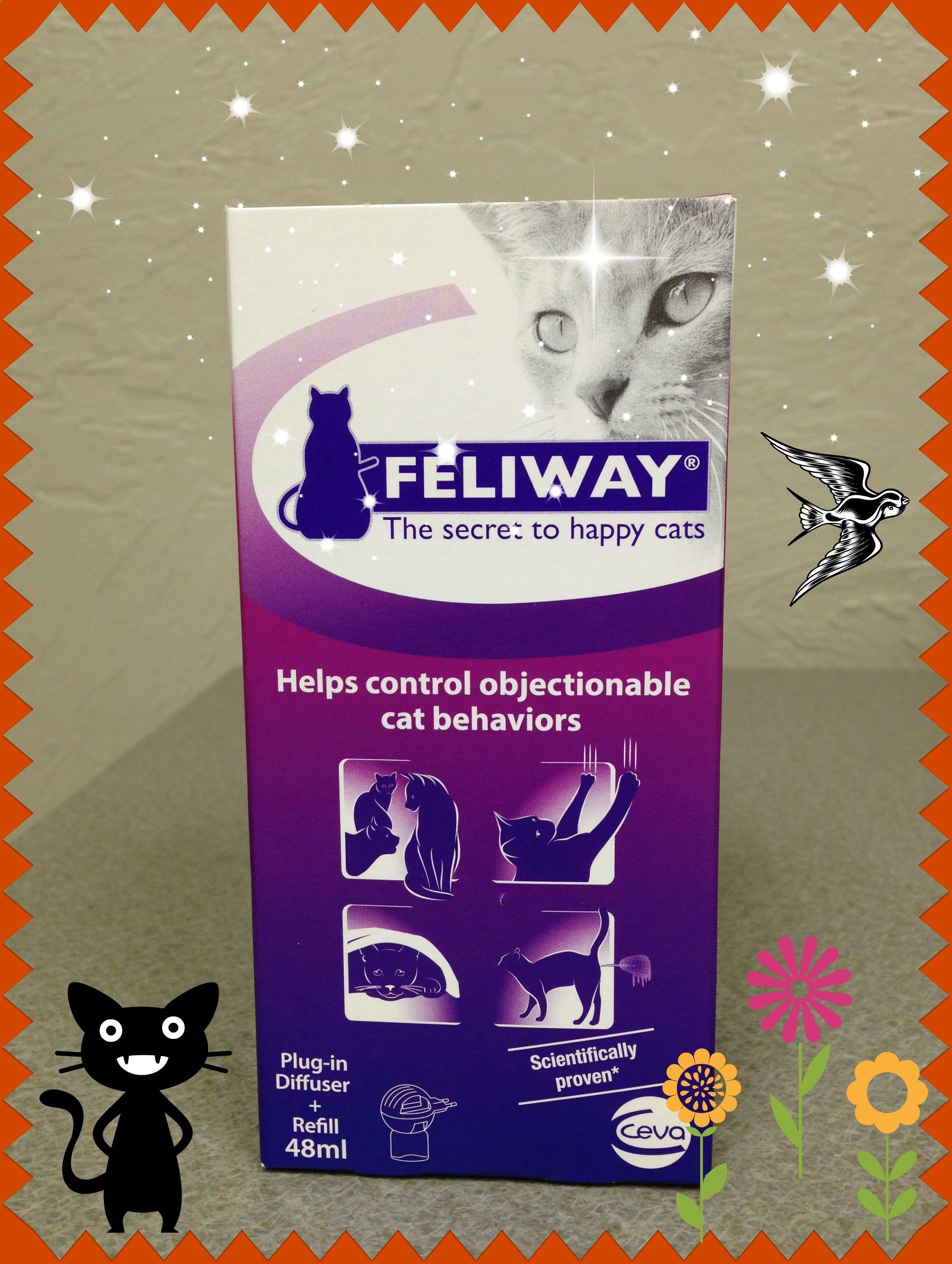Cat Spraying Is A Common Problem And One Of The Most Common Reasons Cats Are Abandoned Or Relinquished During This Last Cat Pee Session Dr Anna Coffin Will D