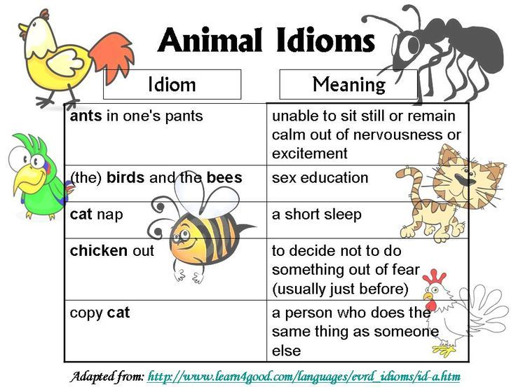 List Of English Idioms And Their Meanings Projects To Try