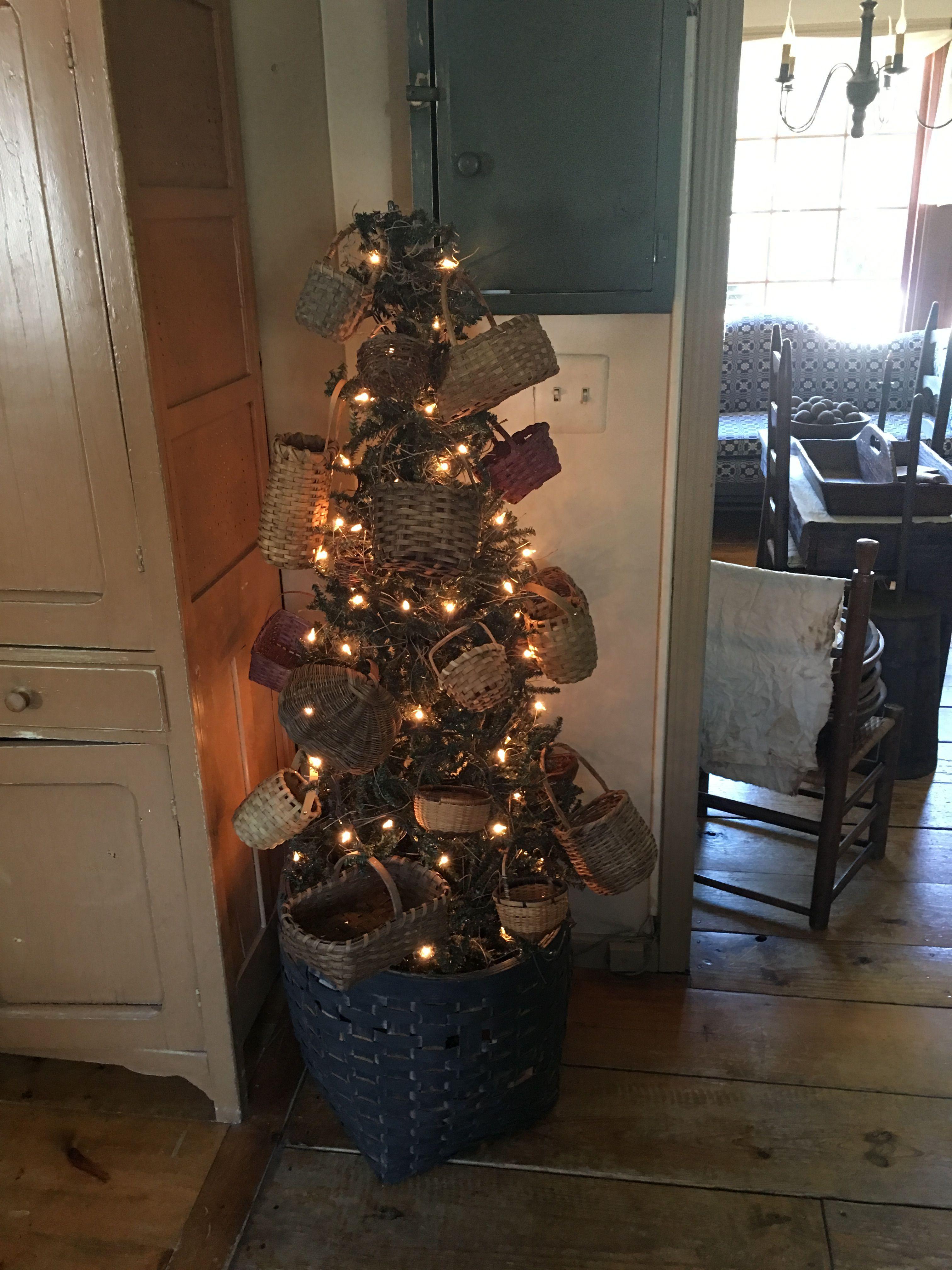 homestead christmas tree farm