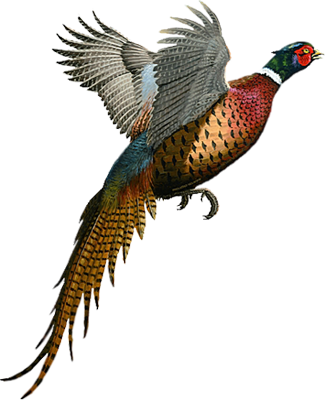 Embroidery Design Pheasants Forever
