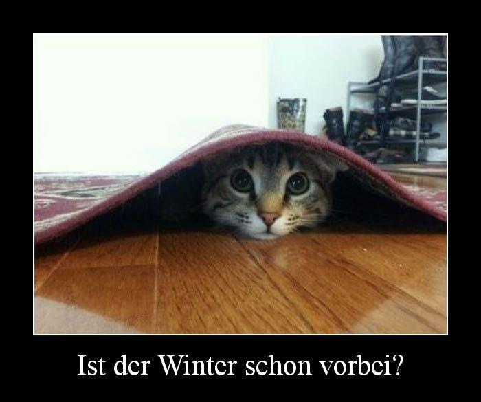 Ist Der Winter Schon Vorbei?