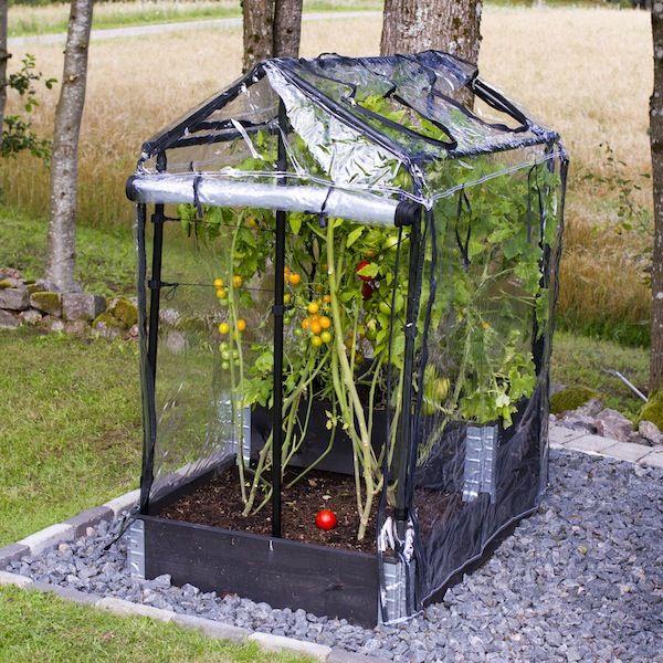 miniväxthus för pallkrage