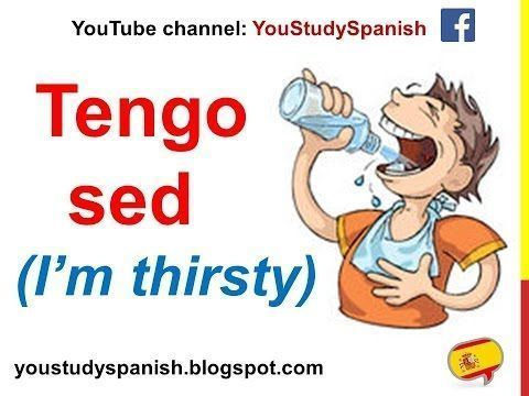 Spanish Lesson 50 - I'm hungry Tengo hambre I'm thirsty Tengo sed Expressions about Food and Drinks - YouTube #i'mthirsty Spanish Lesson 50 - I'm hungry Tengo hambre I'm thirsty Tengo sed Expressions about Food and Drinks - YouTube #imthirsty Spanish Lesson 50 - I'm hungry Tengo hambre I'm thirsty Tengo sed Expressions about Food and Drinks - YouTube #i'mthirsty Spanish Lesson 50 - I'm hungry Tengo hambre I'm thirsty Tengo sed Expressions about Food and Drinks - YouTube #imthirsty Spanish Lesson #imthirsty