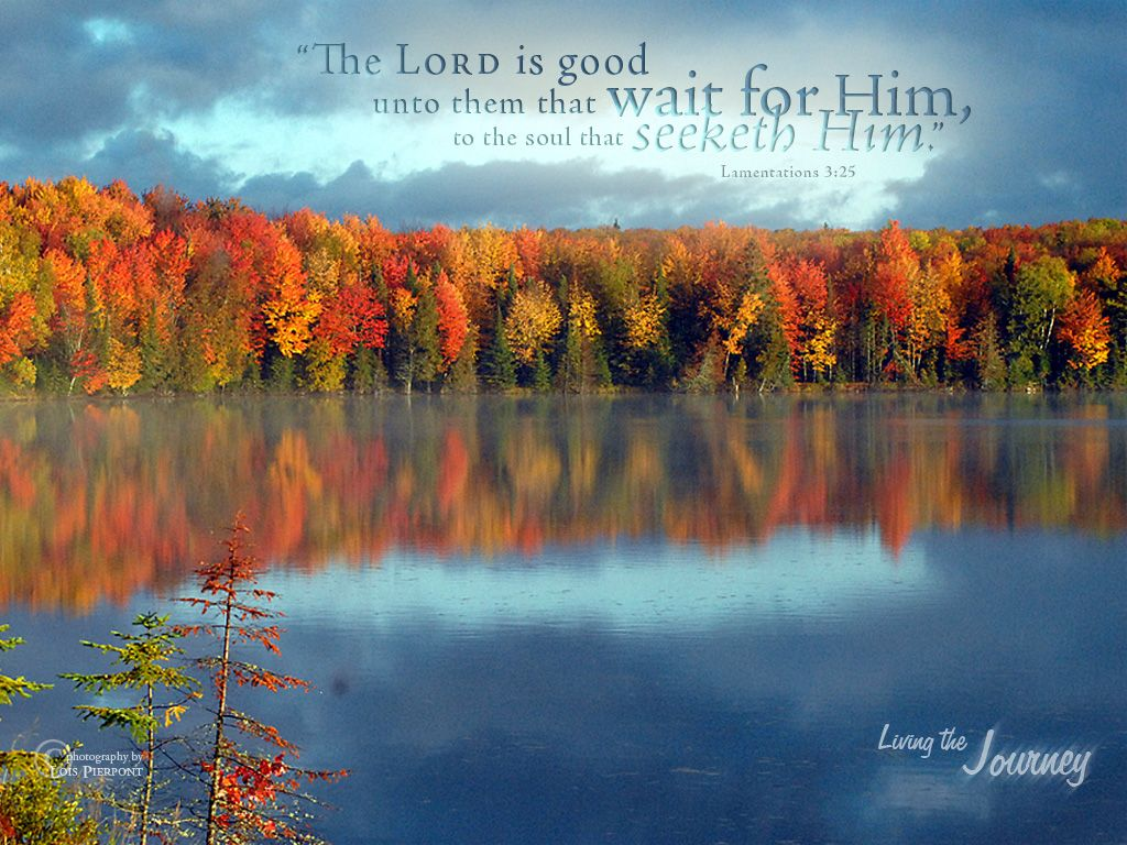 Lovely Autumn Bible Quotes | Fall With Scripture