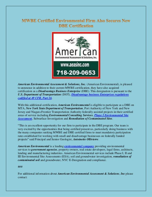 American Environmental Assessment Solutions Inc American