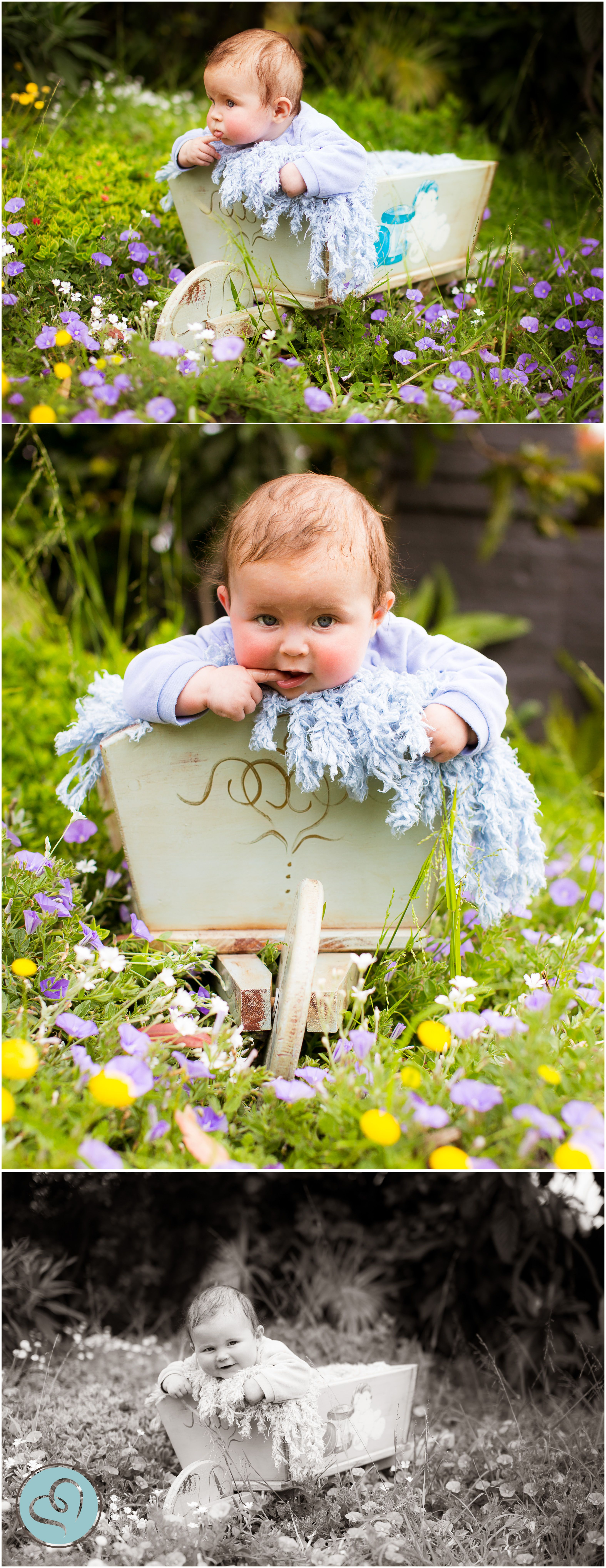 5 month old 6 month old baby photography prop wheelbarrow in 5 month old 6 month old baby photography prop wheelbarrow in garden negle Images