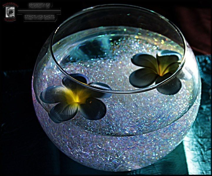 Hologram Centerpiece Lighted And Floating Flowers