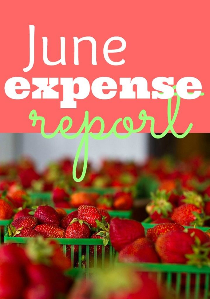 Monthly Expense Report How to Budget Pinterest Personal finance - expense report