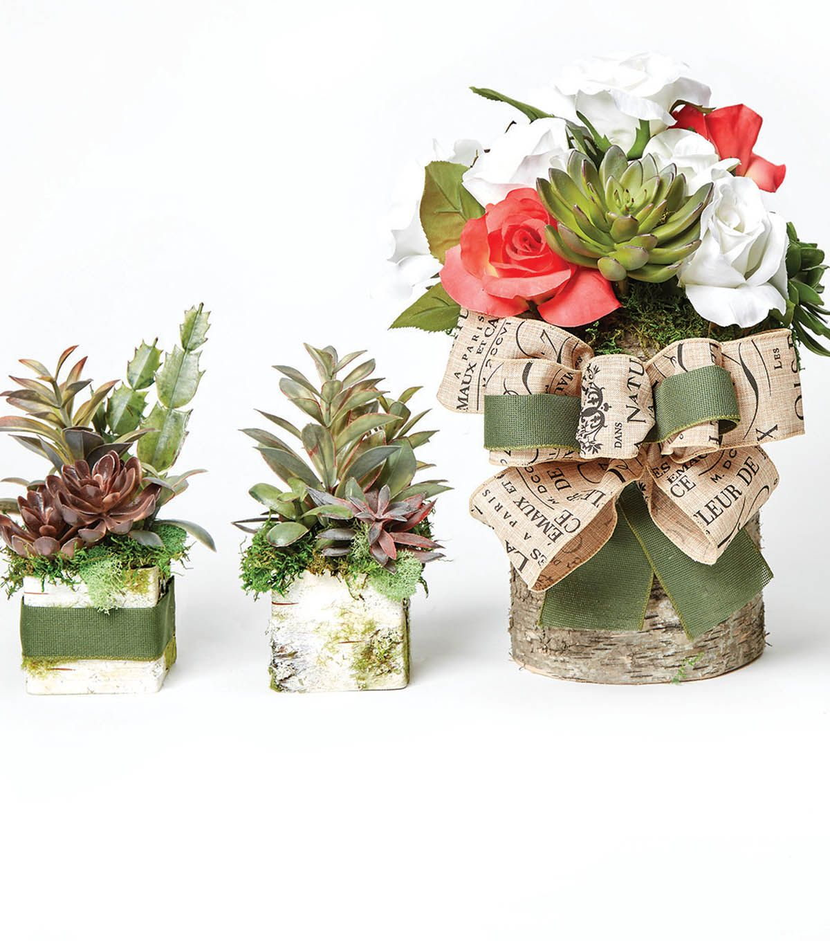 How to make succulent birch containers gardens outdoor decor with joann pinterest birch - How to make a succulent container garden ...