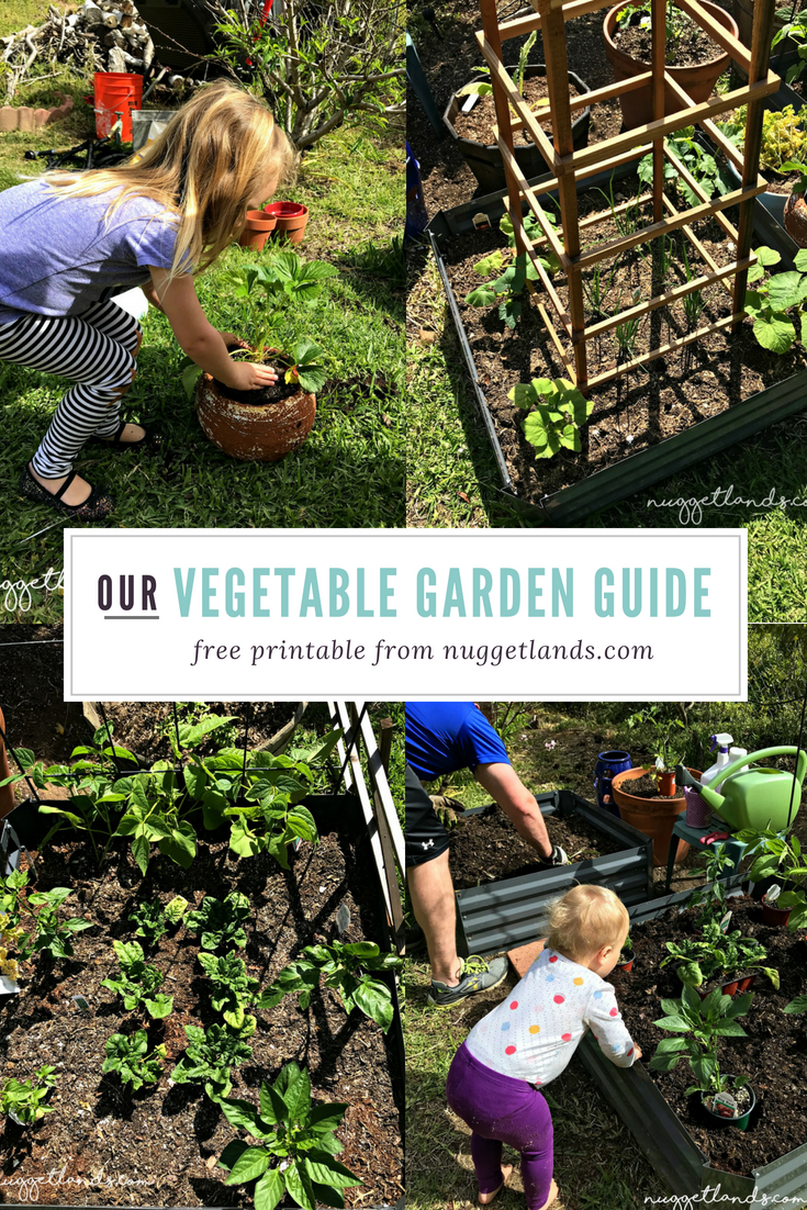 Our Summer Vegetable Garden With Free Printable Plan Summer Vegetables Garden Gardening For Beginners Vegetable Garden For Beginners